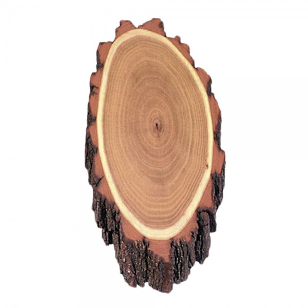 Gehörnbrettchen Rehbock aus Akazienholz