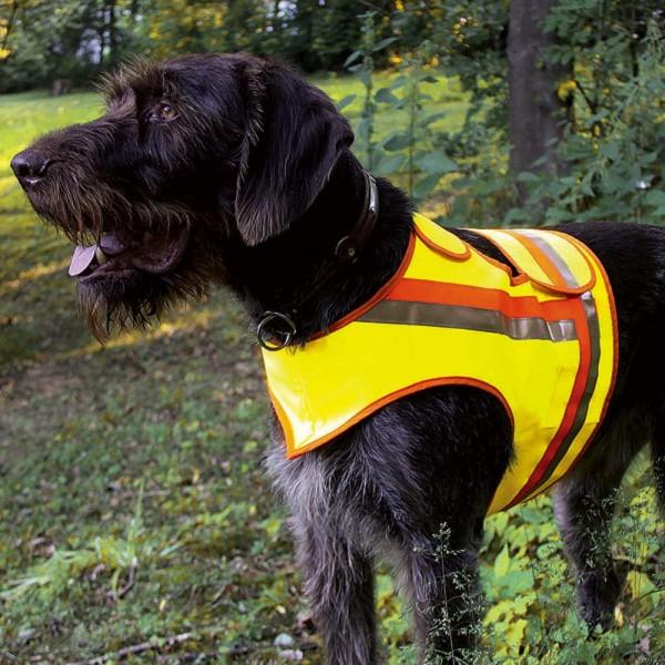Reflektorweste für Jagdhunde